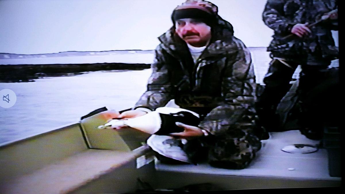Duck friend.jpg
