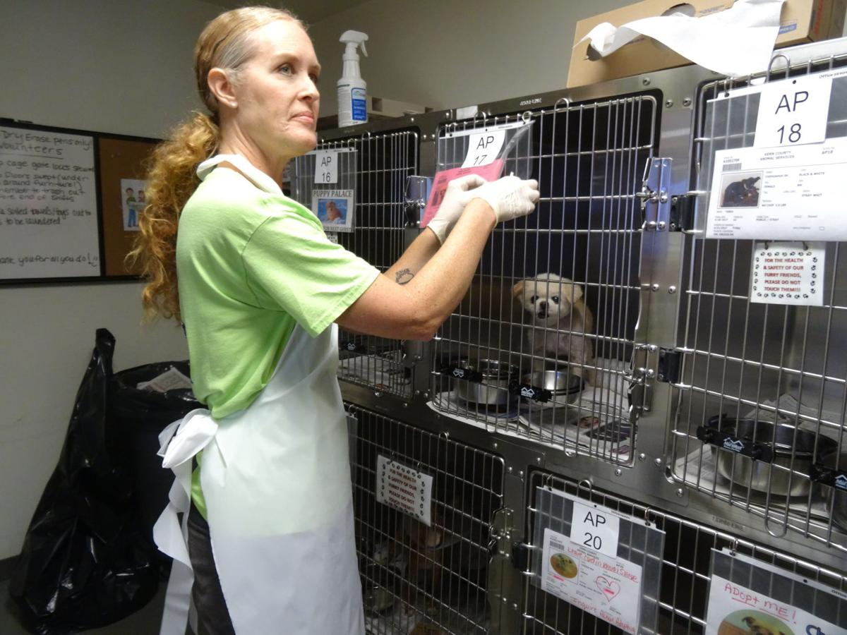 Shelter volunteer Rhonda Montgomery and cages