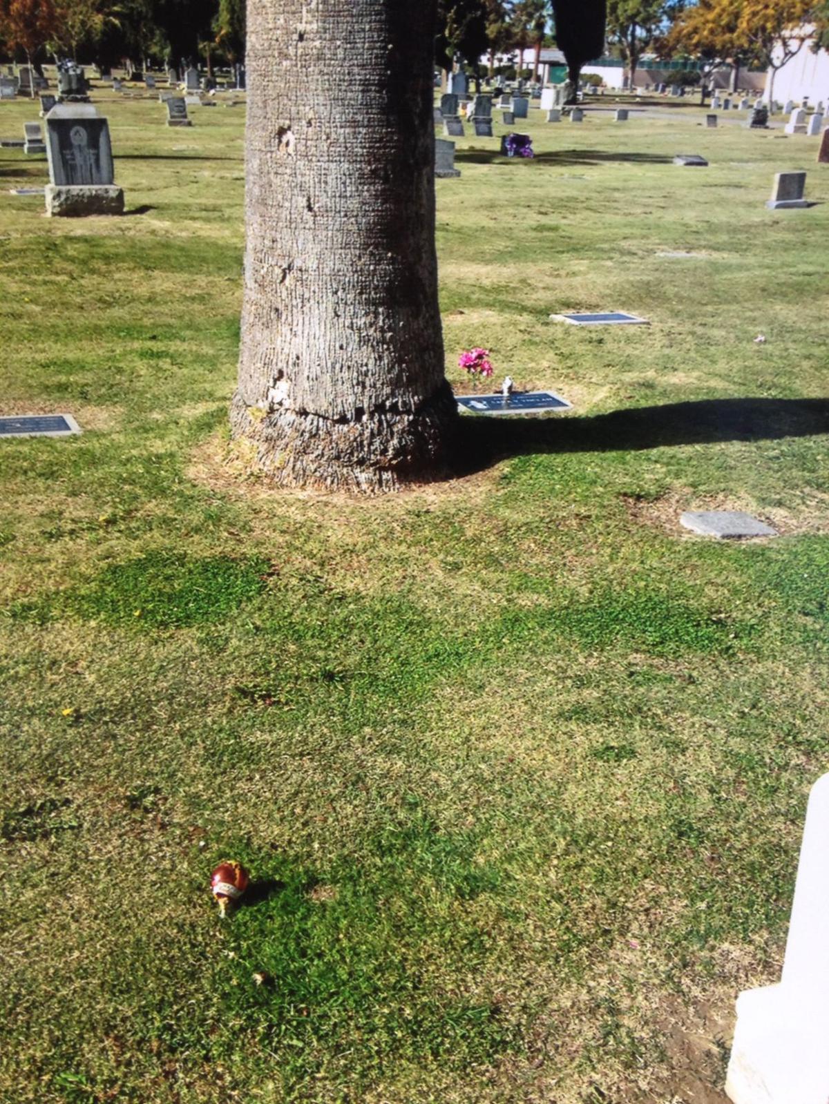 Bludworth grave