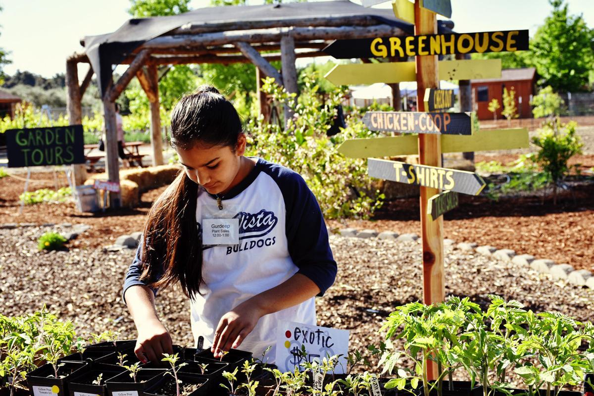 Edible-Schoolyard-4