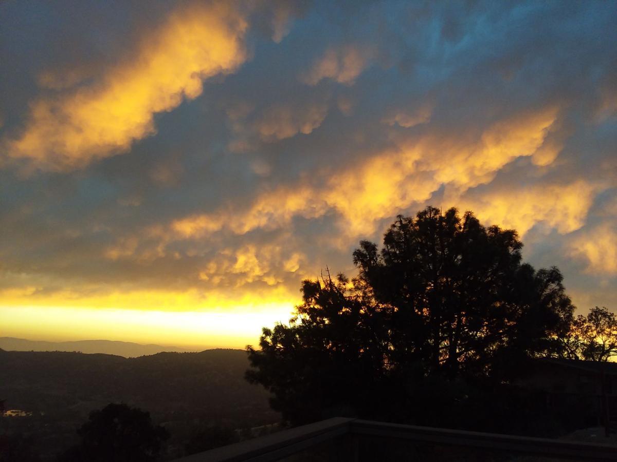 sunset tyl