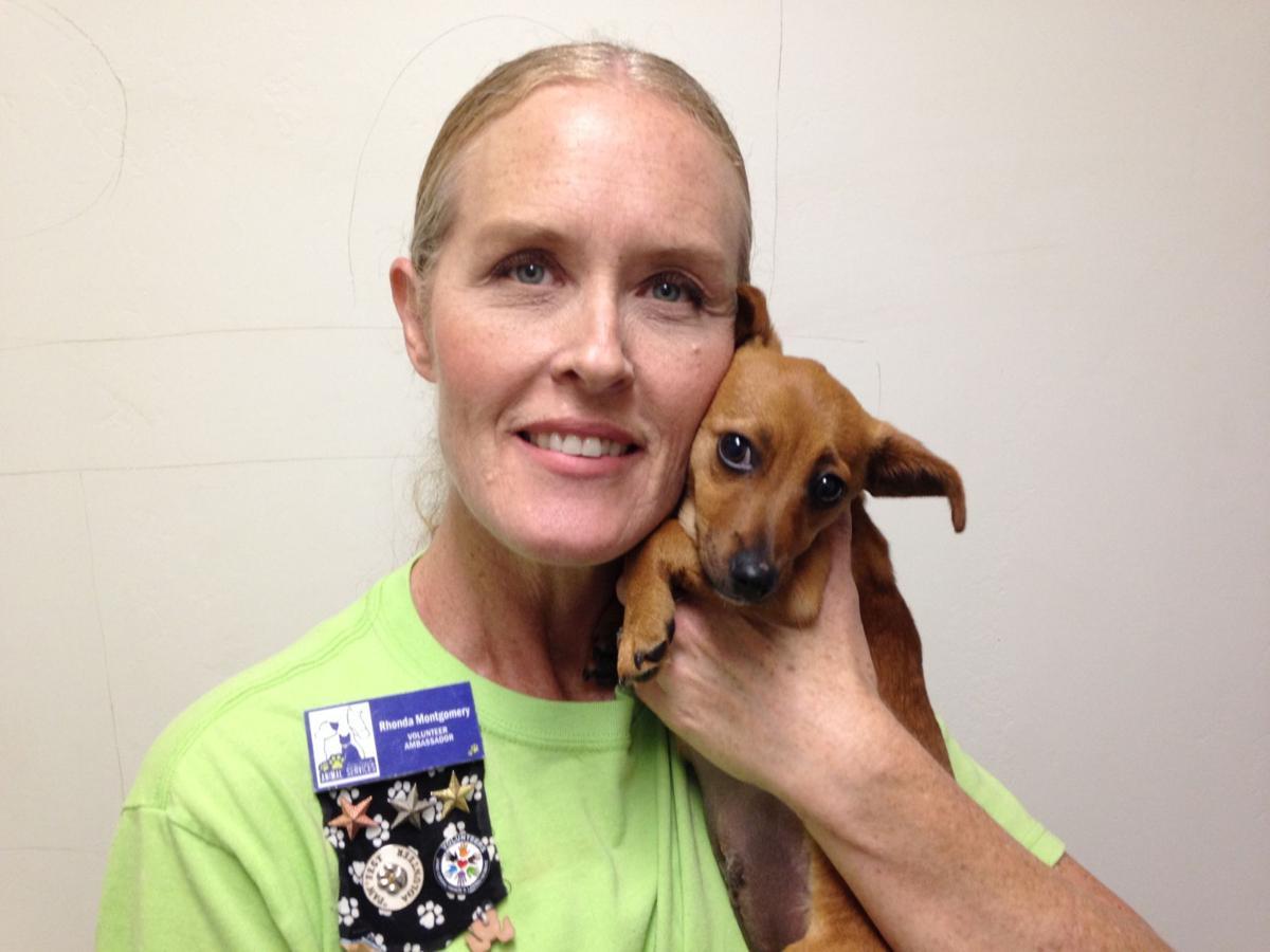 Shelter volunteer Rhonda Montgomery mug