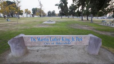 MLK park (copy) (copy)