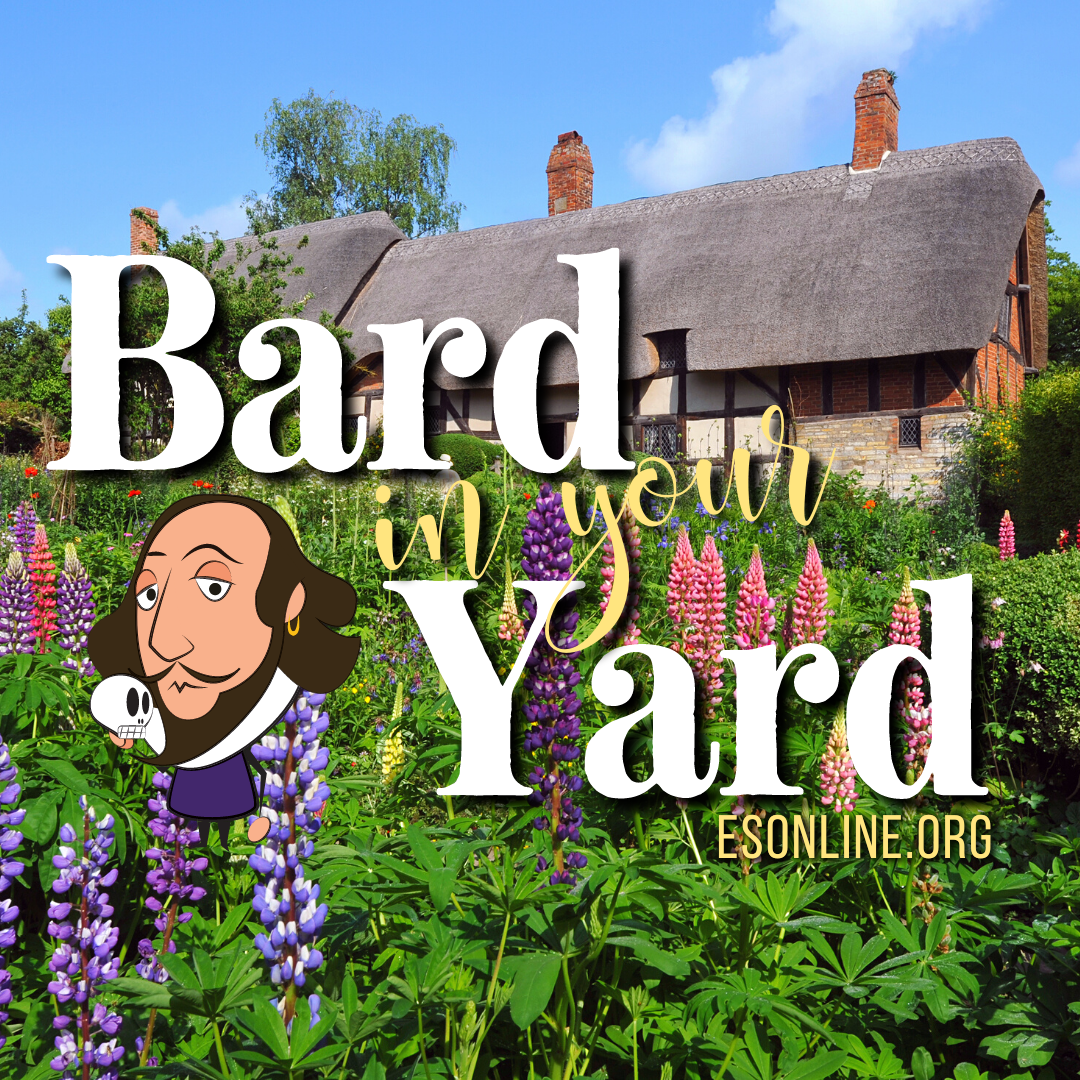 Copy of Bard