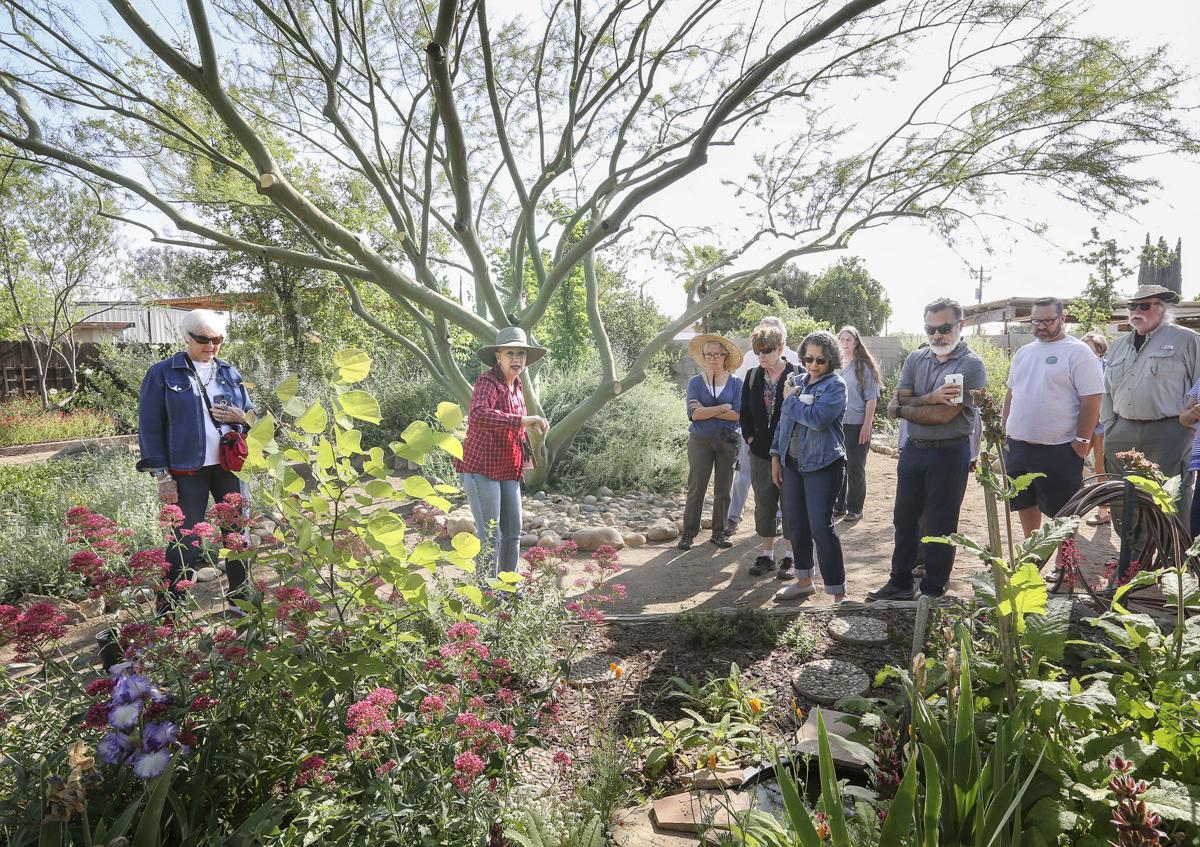 New Show Highlights Drought Tolerant Native Gardens News