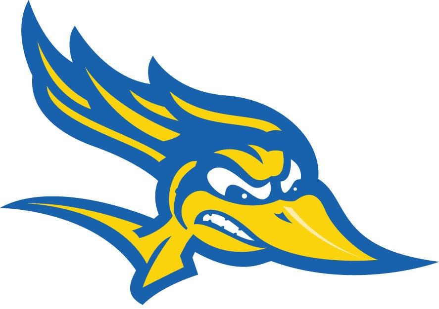 CSUB logo cutout