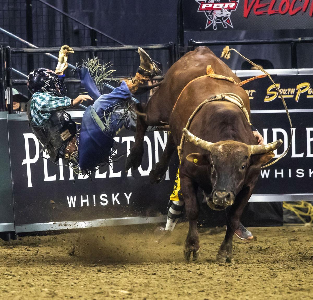 PBR Bull Riding10