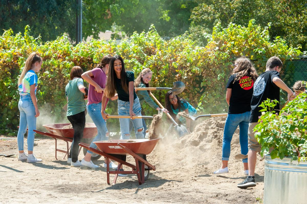 Rosedale Middle School Garden 4