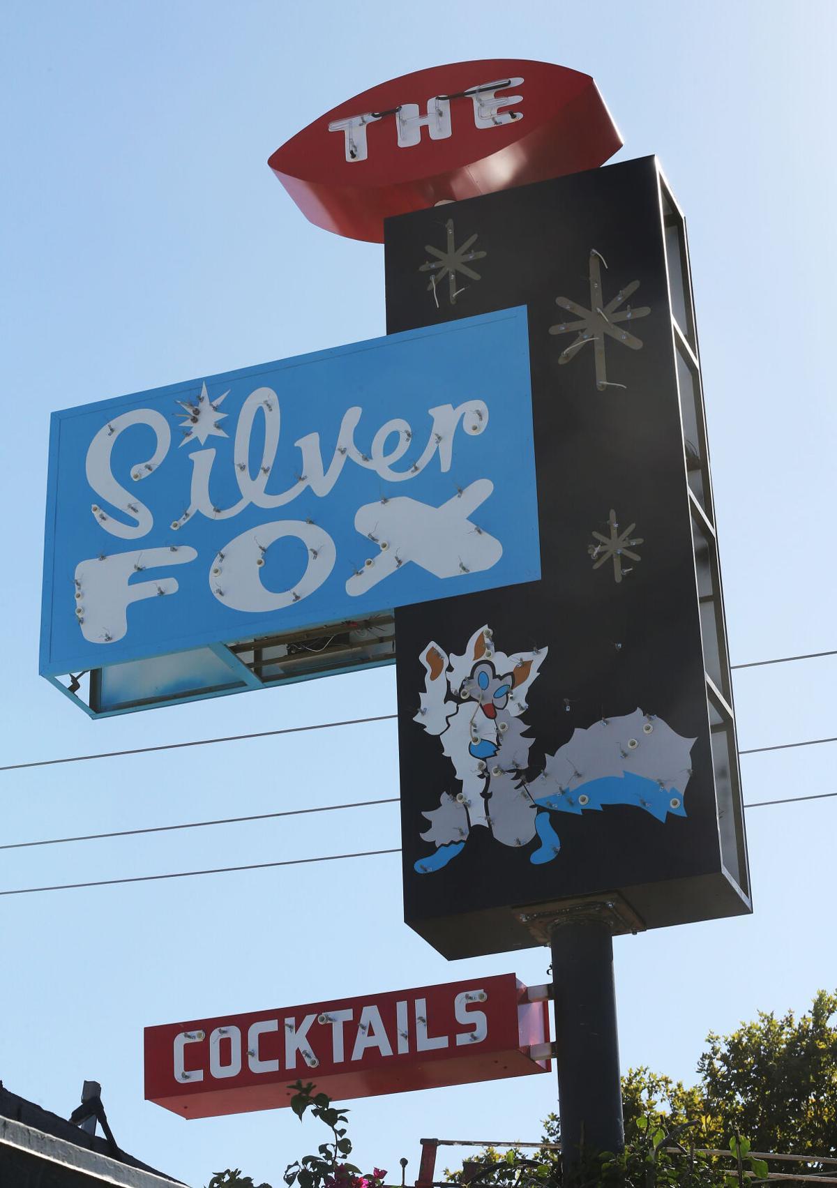SilverFox front