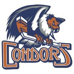 Condors logo (copy)