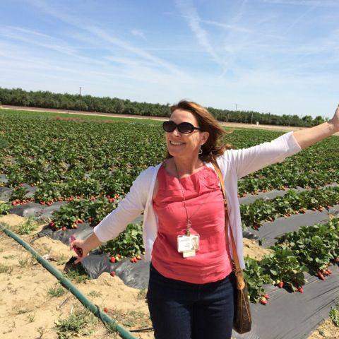 Lois henry strawberry field