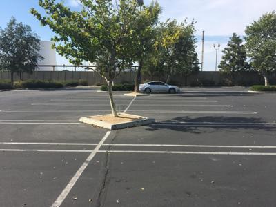 Costco parking lot