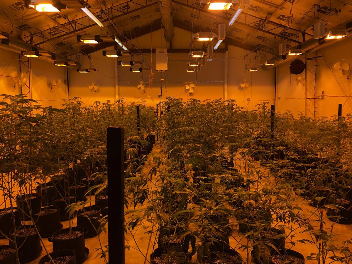 20191008-bc-marijuana-3