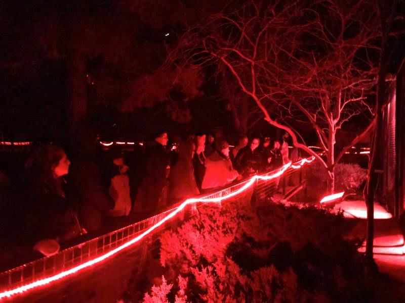 Red Light Tour 3