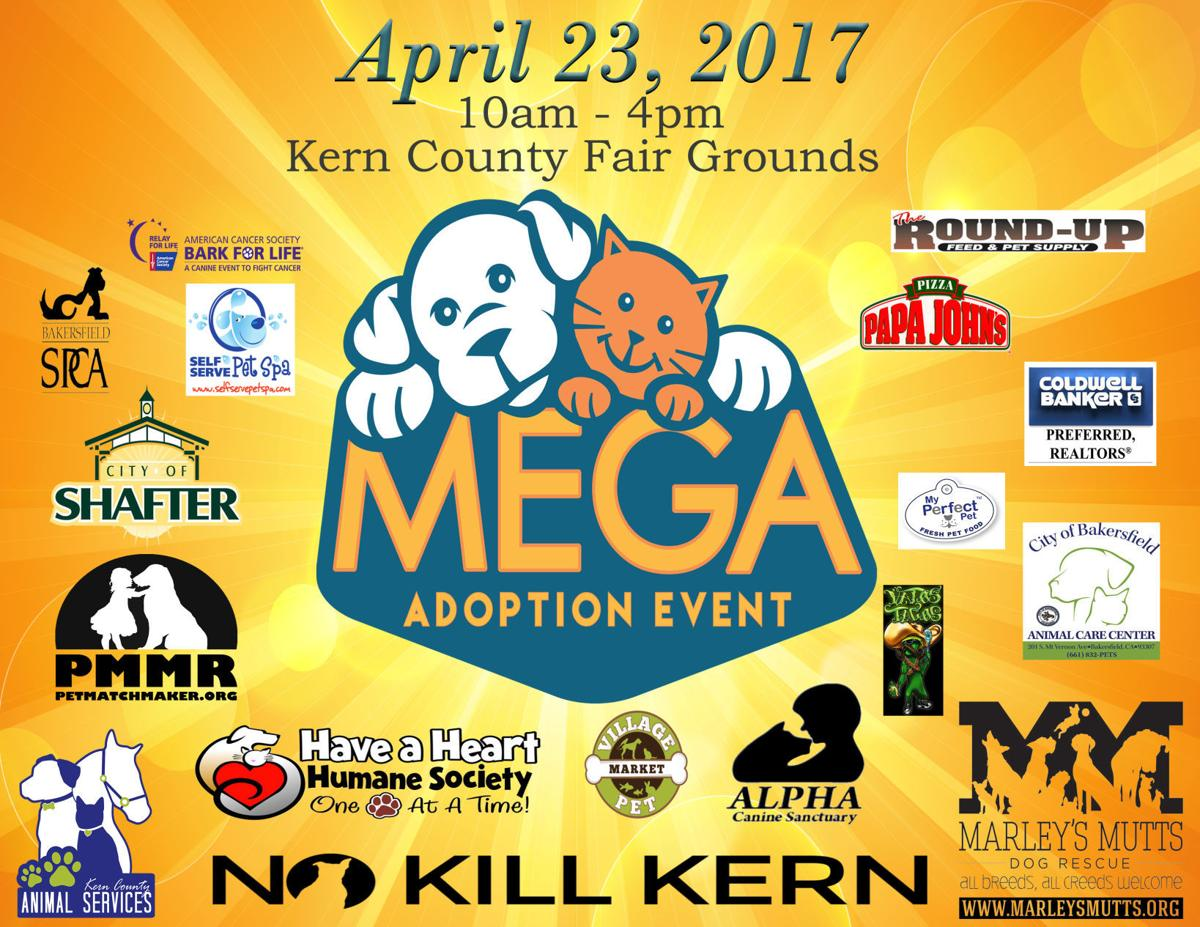 mega adoption flier
