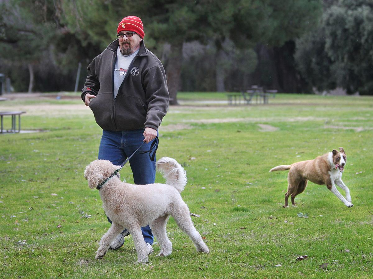 Seasons Dog Park Bakersfield