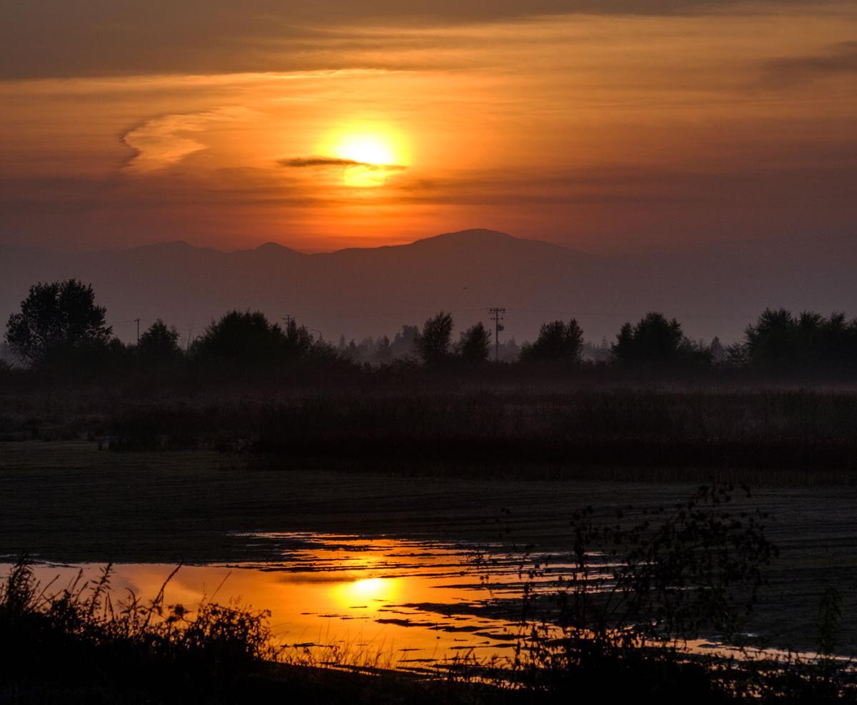 sunrise tyl