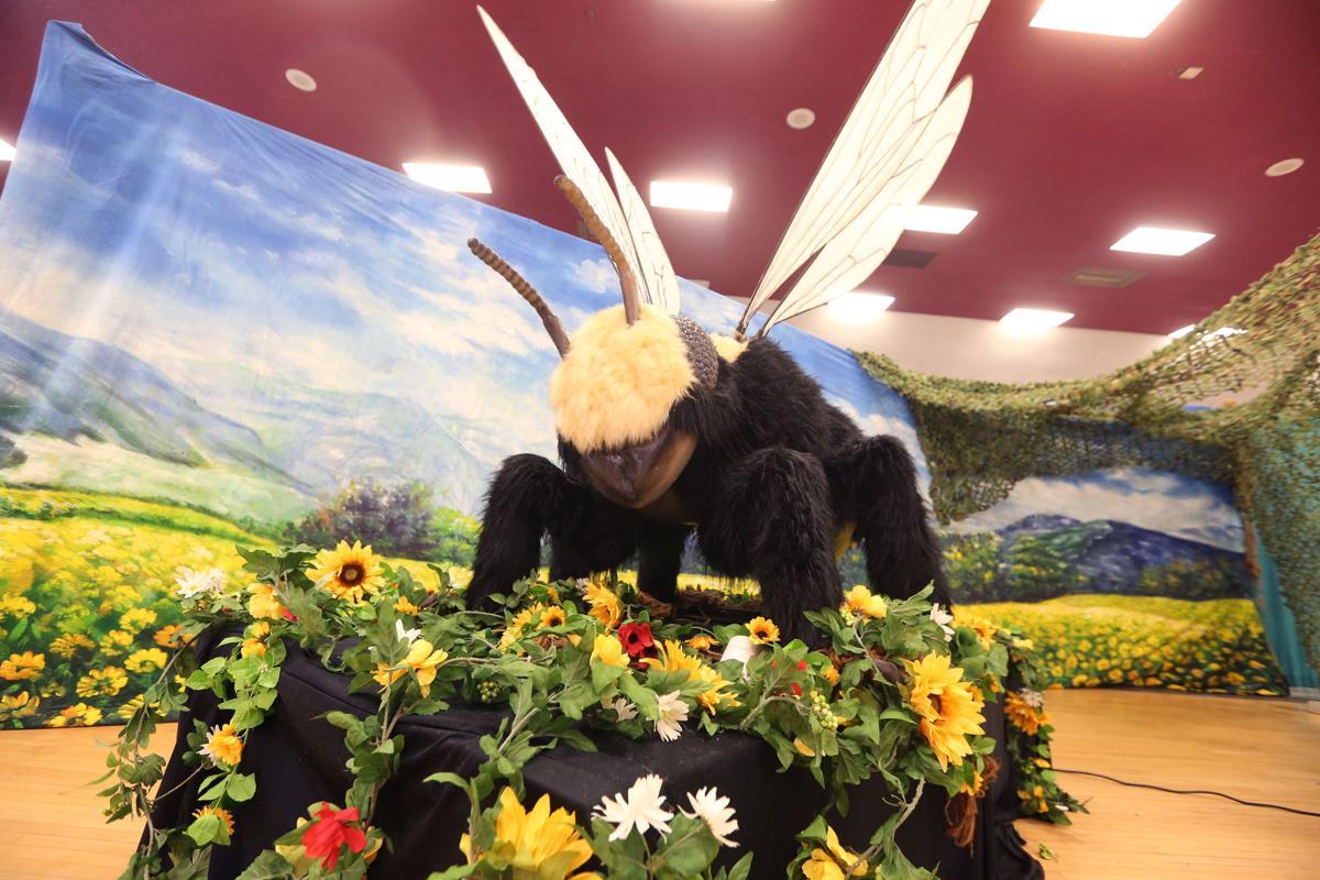 Fair bees