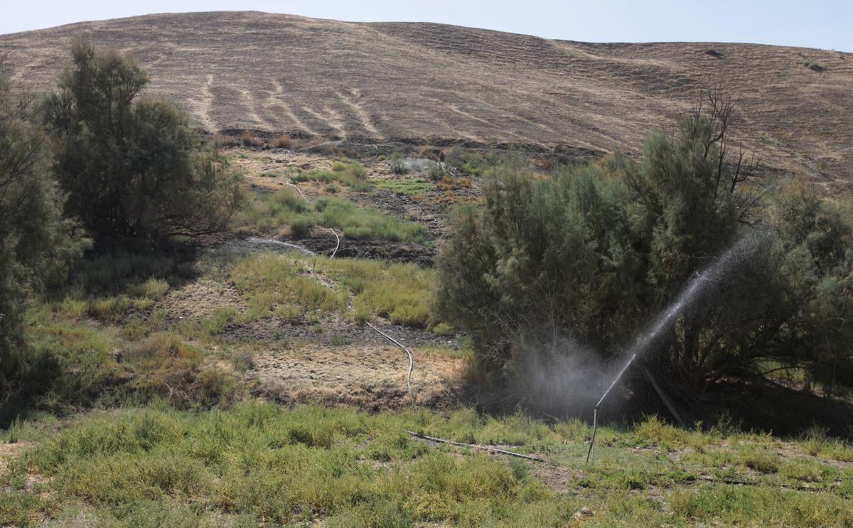 Oilfield_water