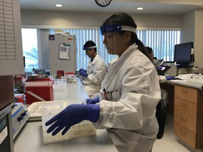 Valley Fever Lab