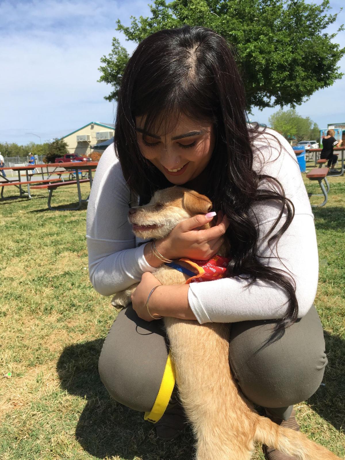 Mega adopt event marilu beltran and dog