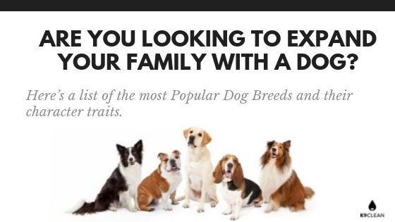 Dog Family - K9Clean.com