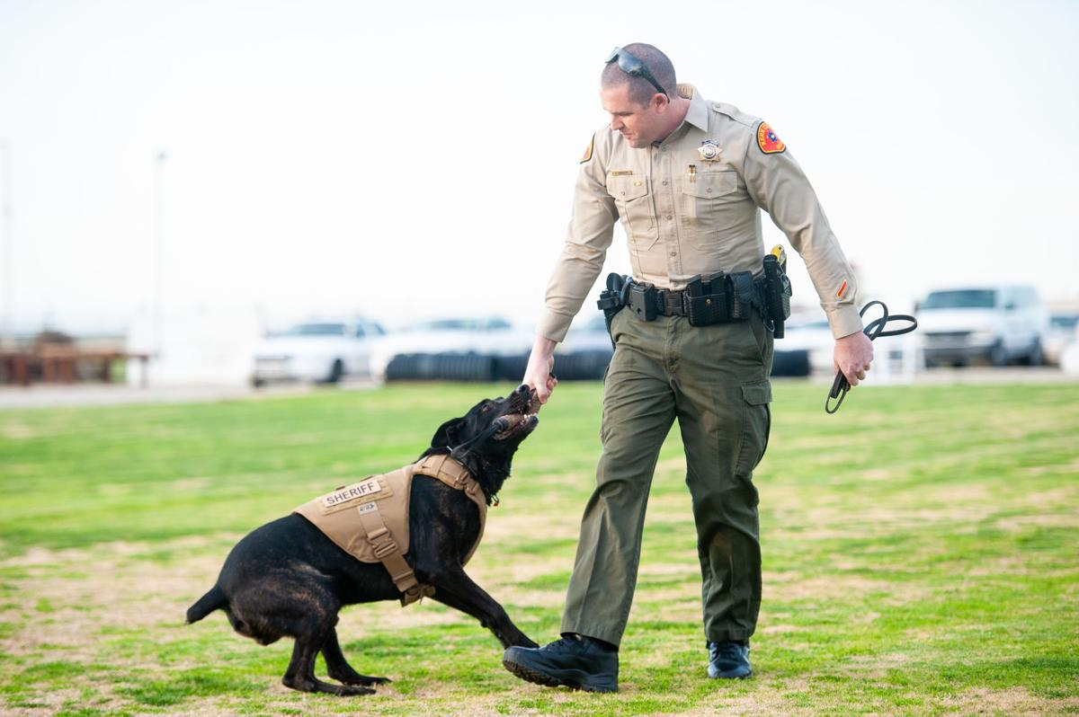 Kern County Sheriffs Office K9 Unit — VACA