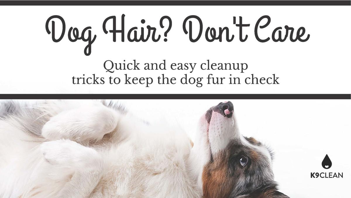 Dog Hair - K9Clean.com