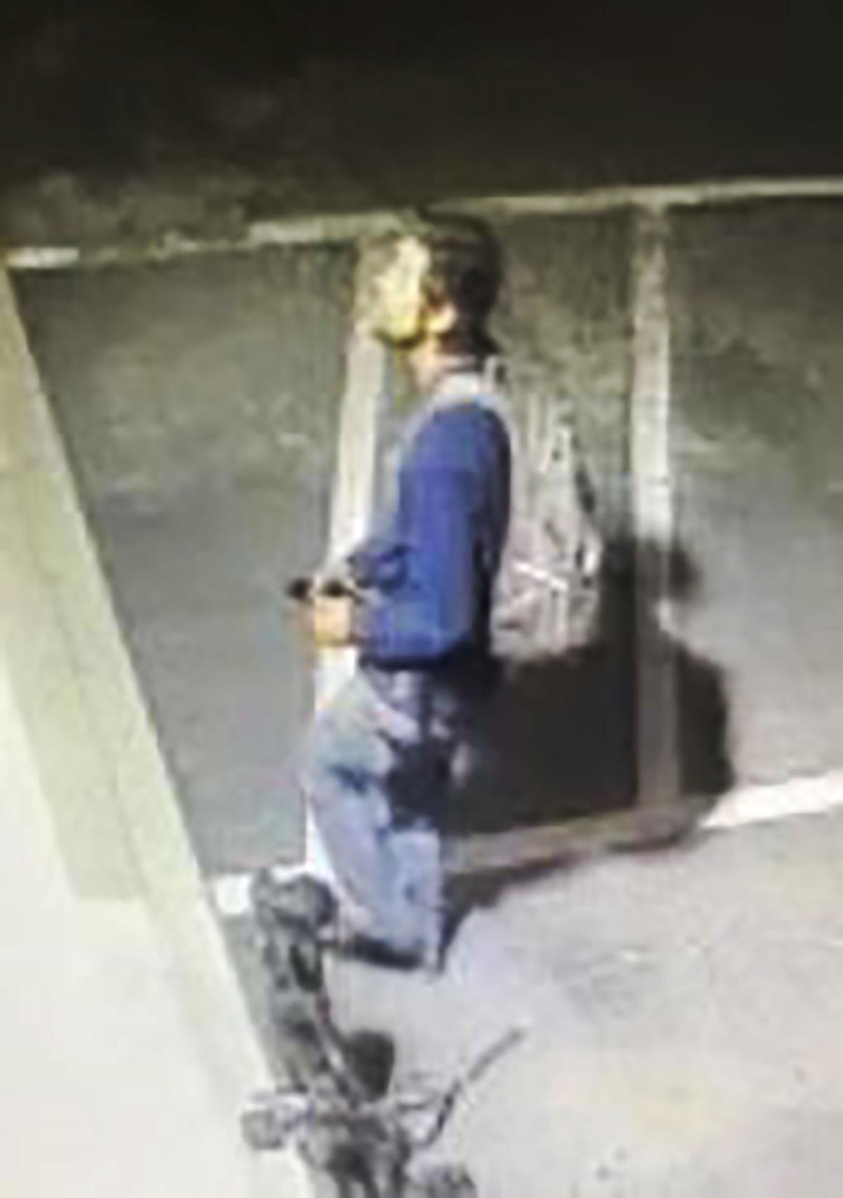 DDS Theft Suspect 1-1
