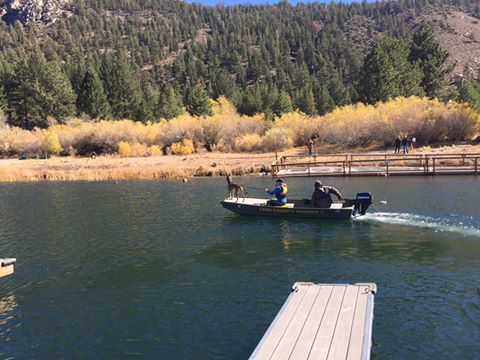 June Lake search