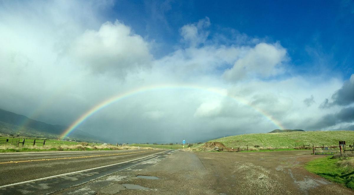 rainbow tyl