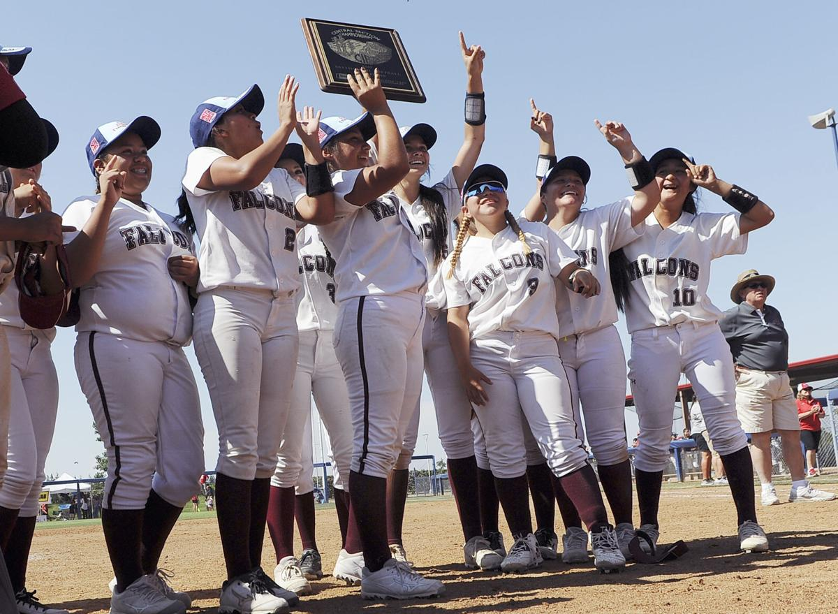Independence softball captures D-III section title