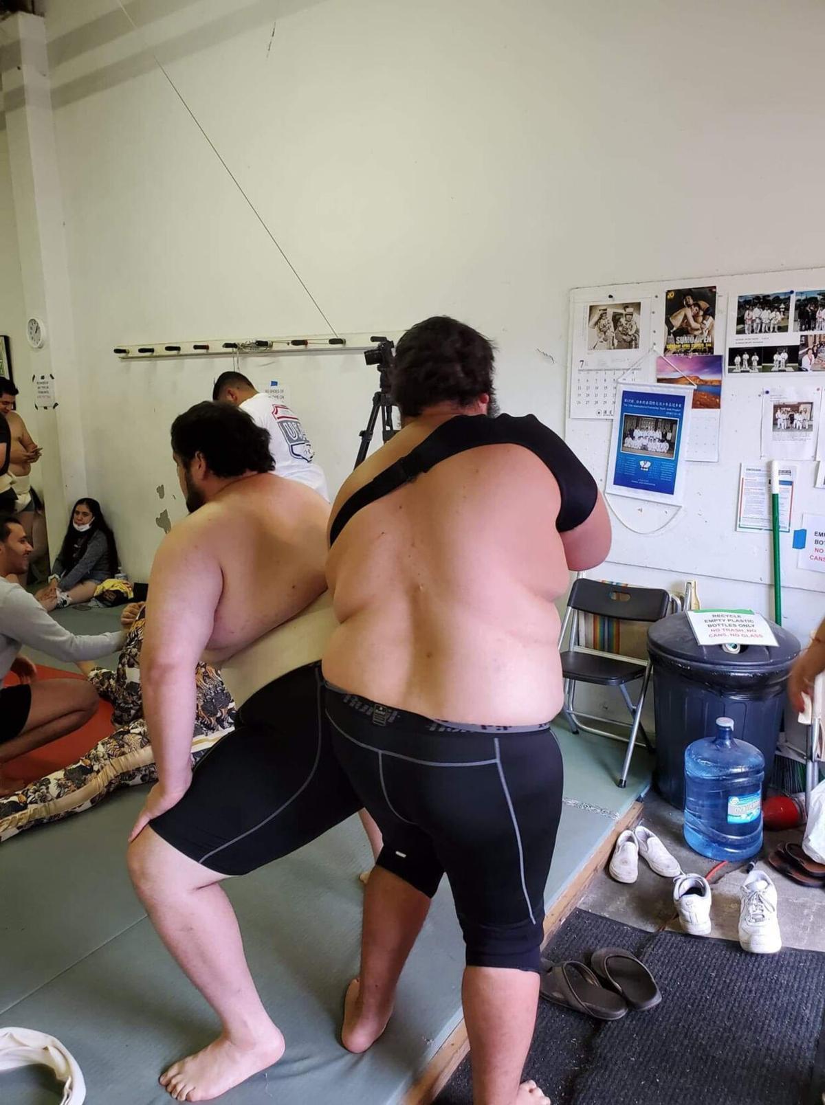 Sumo story art-1