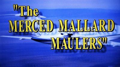 Merced Maulers