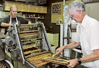 'The sweetest job in the world': Wolf Honey Farm harvests their 'crop'