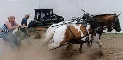 What 'Horse Power' is all about: Local couple dedicated to the sport of horse pulling