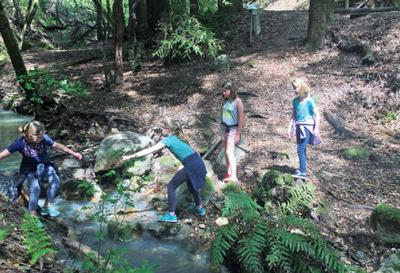 Bay Area Hikes with Kids