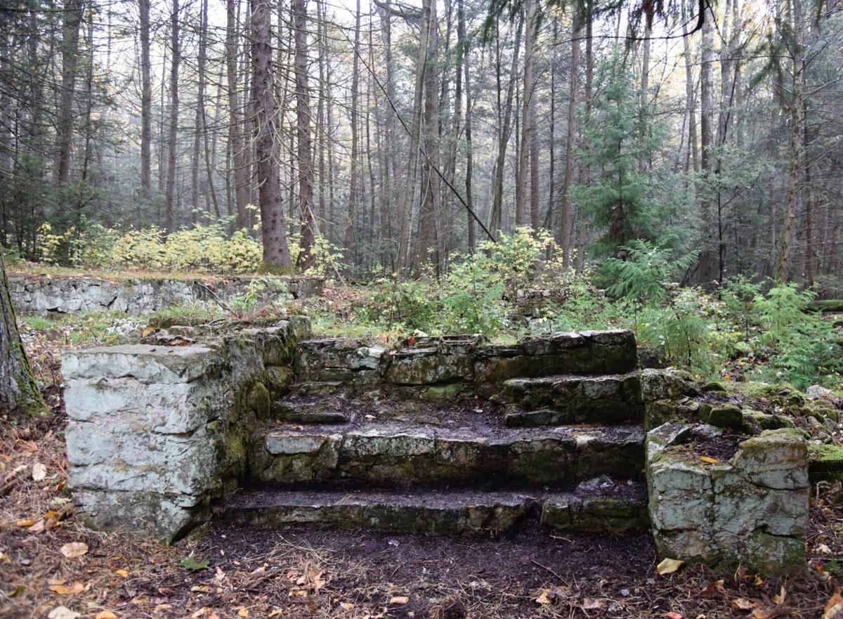 Farmhouse remnants, Stony Creek Valley PA