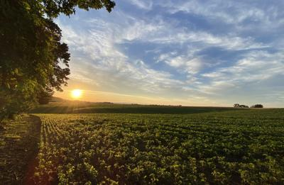 PA farmland at sunset