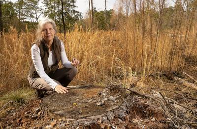 Joan Maloof in Pocomoke State Forest