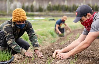 Veterans in farm program