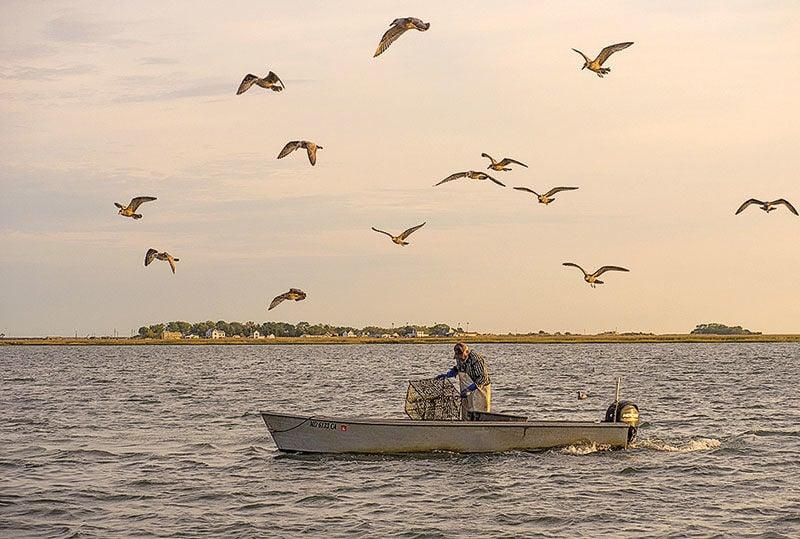 Crabbing near Tylerton, Smith Island MD
