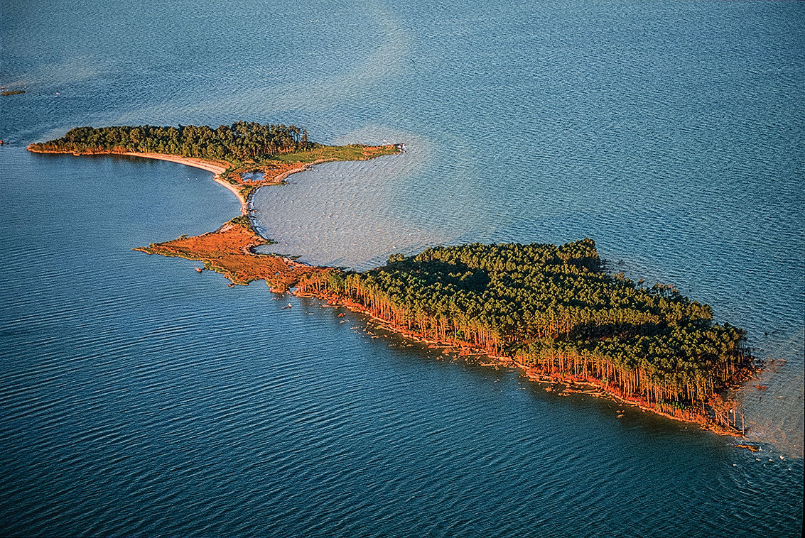 James Island MD in 1999