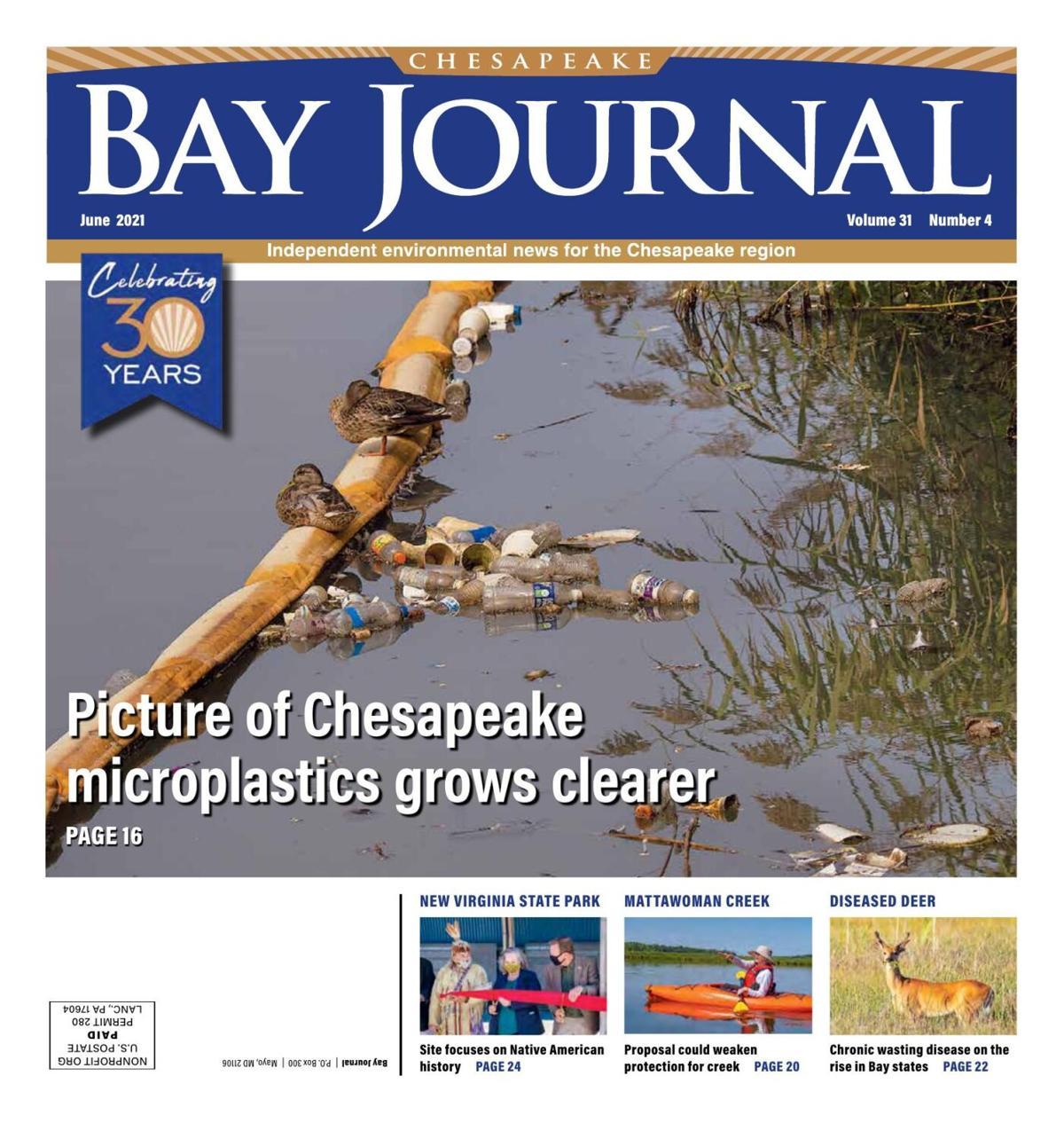 Bay Journal 2021 June