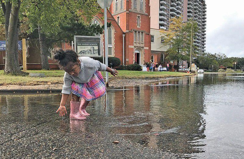Flood of volunteers measures Norfolk's increasing tides