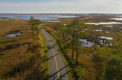Take a ride on the wild side: Explore Blackwater by bicycle