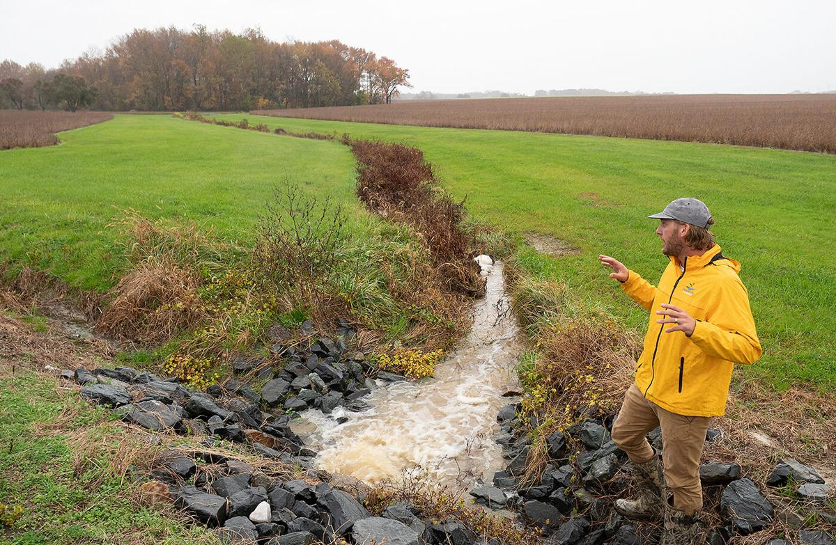 Stormwater from soy fields