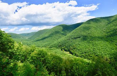 Group sues PA for violating state's Environmental Rights Amendment