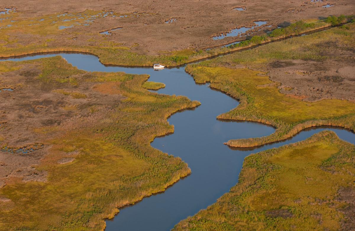 Eastern Shore marsh aerial