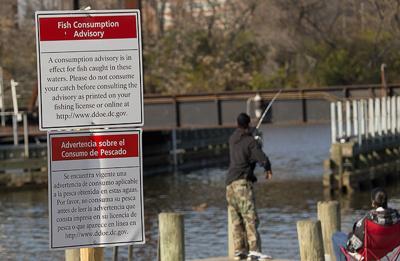Anacostia angler by fish consumption warning